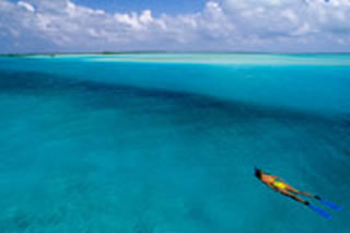 Beach - Surf and Sand vacation rentals by owner